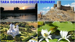 Colaj Dobrogea
